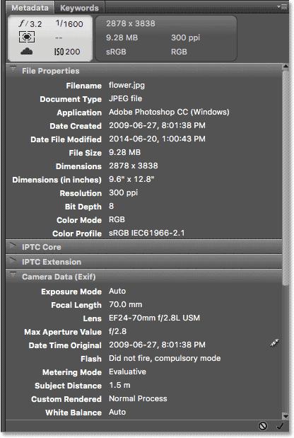 The Metadata panel in Adobe Bridge. Image © 2016 Steve Patterson, Photoshop Essentials.com