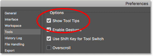 The Show Tool Tips option in the Photoshop Preferences.