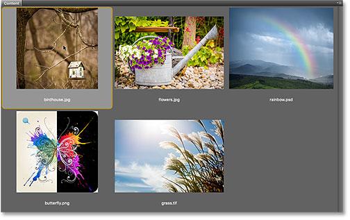 Opening a JPEG image from Adobe Bridge into Photoshop.
