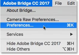 Opening the Adobe Bridge Preferences.