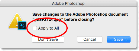 The Appy to All option will save or not save all images you're closing.