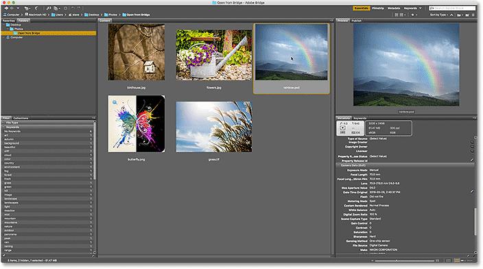 Selecting the next image in Bridge.