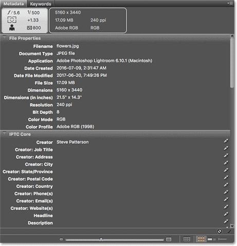 The Metadata panel in Adobe Bridge.