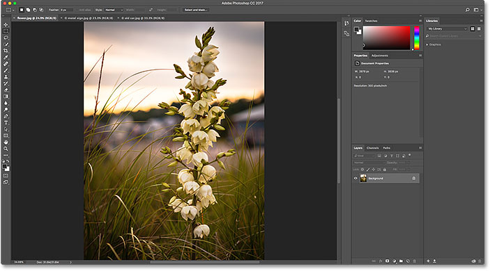 The first image is visible once again. Image © 2016 Steve Patterson, Photoshop Essentials.com