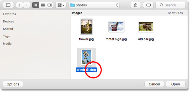Opening a DNG raw file into Photoshop.