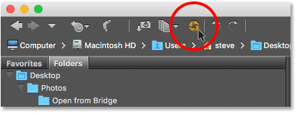 Clicking the Open in Camera Raw icon in Adobe Bridge.