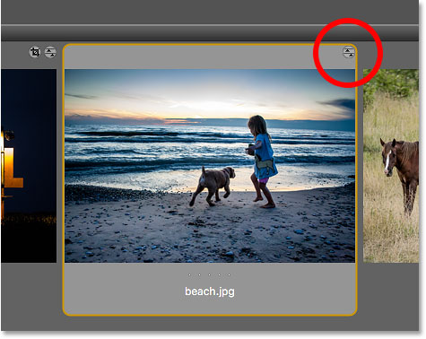 Bridge displays a Camera Raw settings icon in the JPEG file thumbnail.