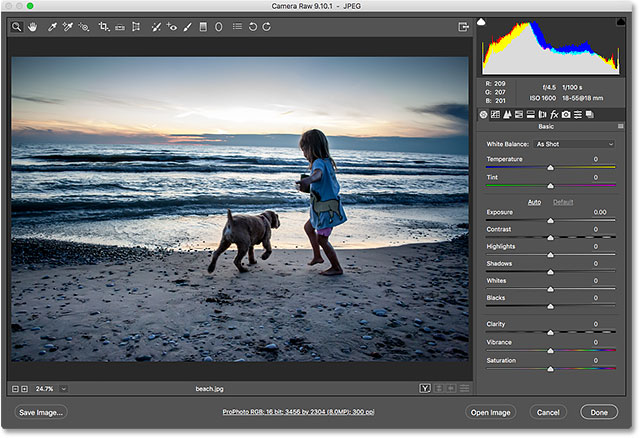 The JPEG image opens in Camera Raw from Adobe Bridge.