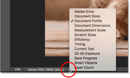 The Status Bar menu in the Photoshop interface.