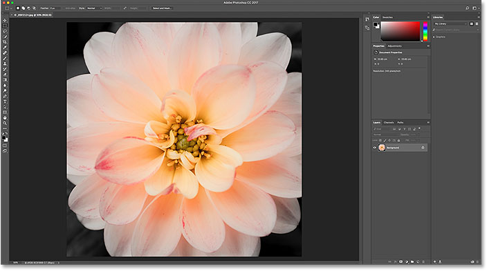 The first image opens in Photoshop. Image © 2016 Steve Patterson, Photoshop Essentials.com