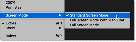 Viewing the Screen Modes from the View menu in Photoshop.