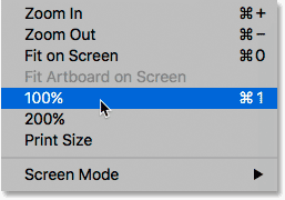 Selecting the 100 Percent View Mode in Photoshop.