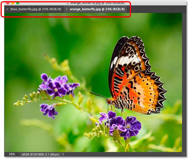 Two images docked together as tabs inside a floating window. Image © 2013 Photoshop Essentials.com
