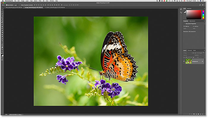 A second open image is visible after clicking its tab. Image licensed from Adobe Stock.
