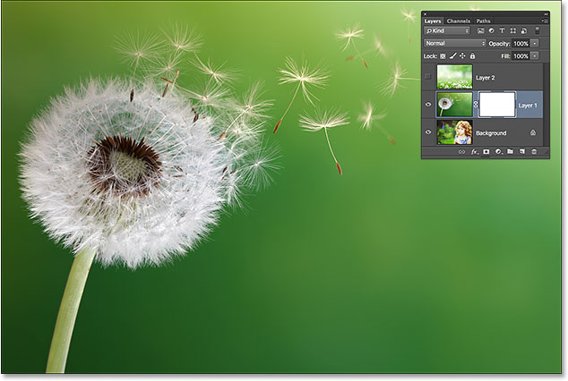 A white-filled layer mask means the entire image on the layer is visible. Image © 2015 Steve Patterson, Photoshop Essentials.com