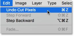 Choosing Undo Cut Pixels from under the Edit menu.