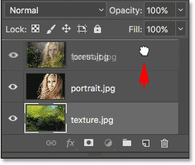 Dragging the portrait layer above the forest layer. Image © 2017 Photoshop Essentials.com