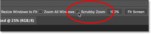 Disabling Scrubby Zoom in Photoshop
