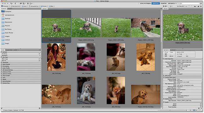 Adobe Bridge CS5. Image &copy; 2011 Photoshop Essentials.com.