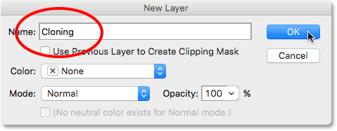The New Layer dialog box.
