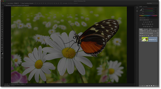 The Layers panel in the Photoshop CS5 interface. Image © 2016 Photoshop Essentials.com