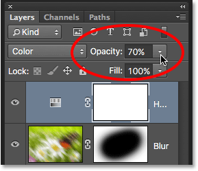 The layer opacity option in the Layers panel. Image © 2016 Photoshop Essentials.com