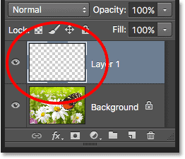 A new layer named Layer 1 appears in the Layers panel.