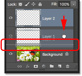 Dragging Layer 2 below Layer 1. Image © 2016 Photoshop Essentials.com