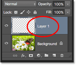 A new layer named Layer 1 appears in the Layers panel. Image © 2016 Photoshop Essentials.com