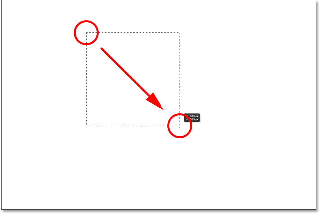 Drawing a square selection with the Rectangular Marquee Tool.