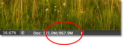 The document window in Photoshop showing the current file size. Image © 2012 Steve Patterson, Photoshop Essentials.com