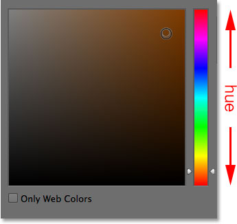 The main hue strip in the Color Picker. Image © 2014 Photoshop Essentials.com