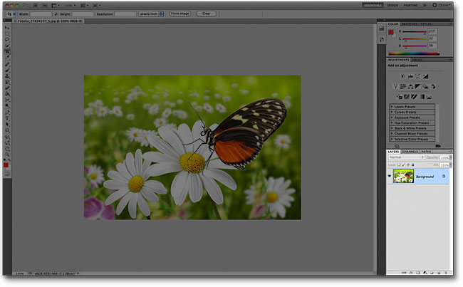 The Layers panel in the Photoshop CS5 interface. Image © 2011 Photoshop Essentials.com
