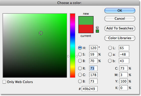 Choosing green from the Color Picker in Photoshop. Image © 2011 Photoshop Essentials.com