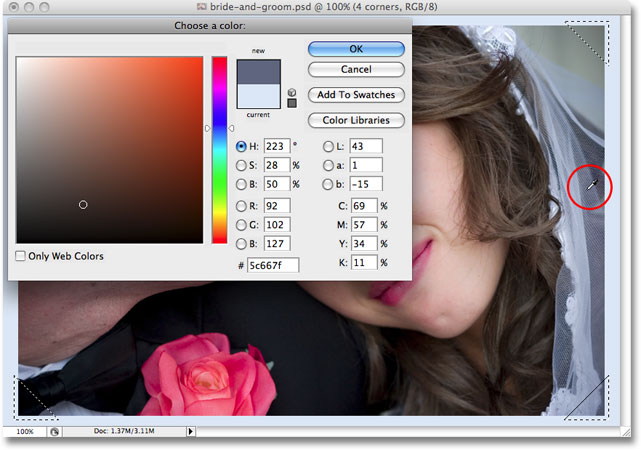 Sampling a color from the image to use as the photo corners in the frame effect. Image copyright © 2008 Photoshop Essentials.com