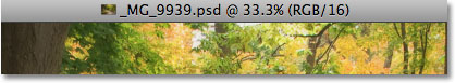 The information along the top of the document window in Photoshop CS4. Image © 2009 Photoshop Essentials.com.
