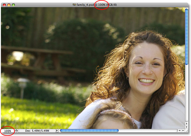The image has zoomed out to 100%. Image © 2009 Photoshop Essentials.com.