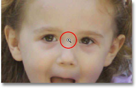 The default behavior of the Zoom Tool is 'zoom in'. Image © 2009 Photoshop Essentials.com.