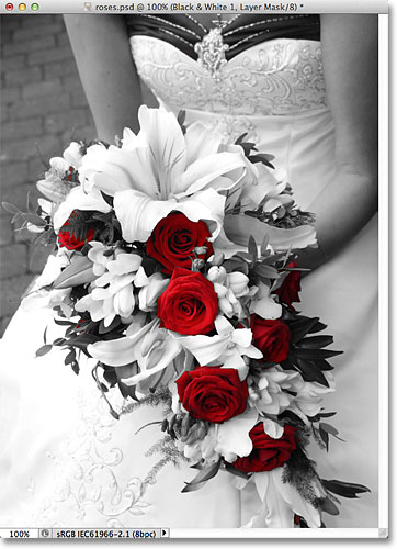 Color roses against a black and white image. Image © 2012 Photoshop Essentials.com