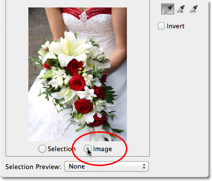 Switching between the Image and Selection options in the Color Range dialog box.
