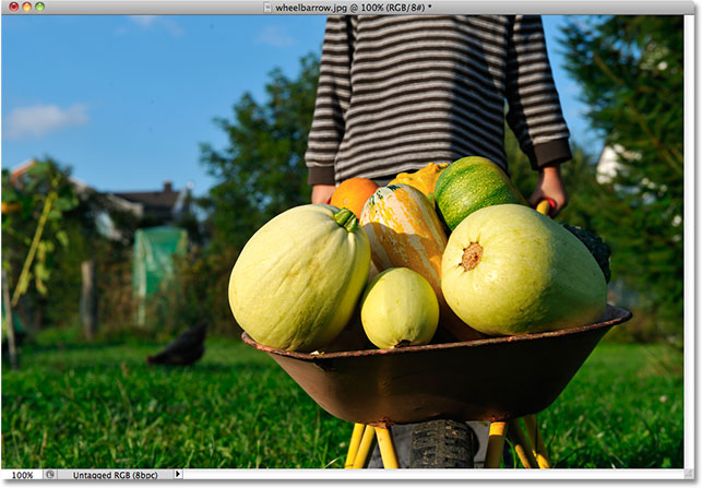 A child pushing a wheelbarrow filled with pumpkins. Image licensed from Shutterstock by Photoshop Essentials.com