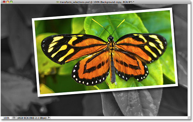 Photoshop picture-in-picture effect. Image © 2010 Photoshop Essentials.com