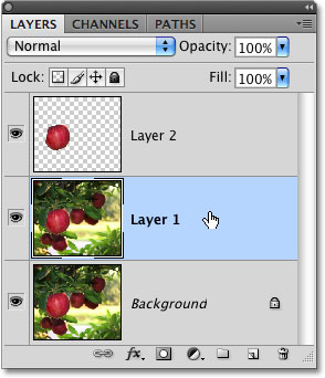 Clicking on a layer to select it in Photoshop. Image © 2009 Photoshop Essentials.com