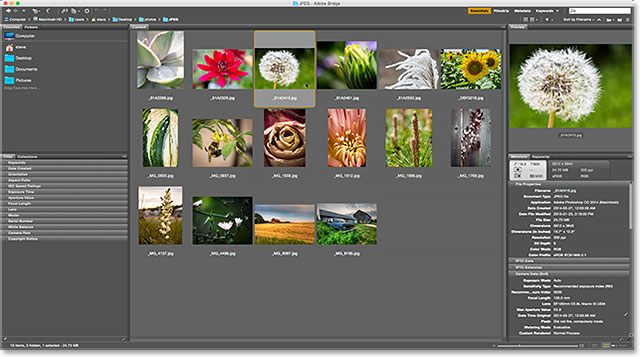 Choosing the Browse in Bridge command from under the File menu in Photoshop.