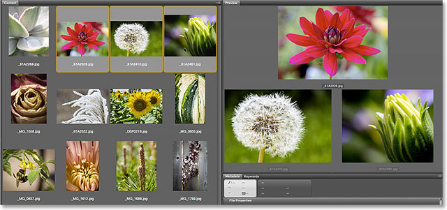 Inspecting the image in the 100 percent view mode. Image © 2015 Photoshop Essentials.com