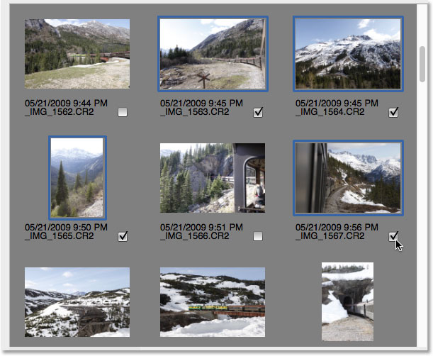 Manually selecting images in the Photo Downloader.