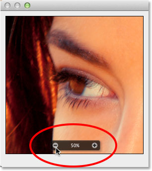 Changing the zoom level using the bar along the bottom. Image © 2013 Photoshop Essentials