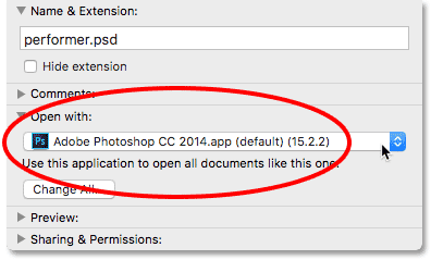 The Info dialog box showing an older version of Photoshop set to open PSD files.