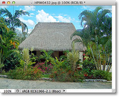 The image after resizing it by 50 percent in Photoshop. Image &copy; 2012 Photoshop Essentials.com
