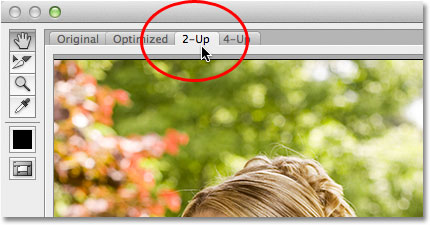 Selecting the 2-Up view mode for the preview area in the Save For Web and Devices dialog box. Image © 2012 Photoshop Essentials.com